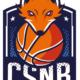 Le CS Noisy-le-Grand Basket 93 recherche des entraîneurs